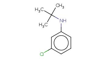 CC(C)(C)Nc1cccc(c1)Cl