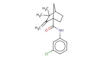 CC1(C2CCC(C2)(C1=C)C(=O)Nc3cccc(c3)Cl)C