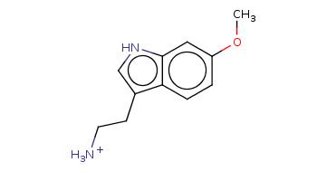 COc1ccc2c(c1)[nH]cc2CC[NH3+]