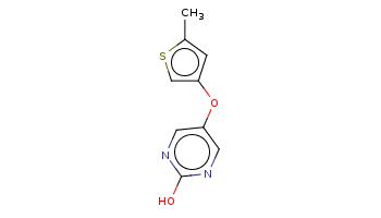 Cc1cc(cs1)Oc2cnc(nc2)O
