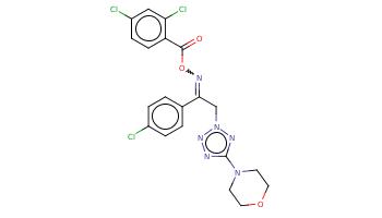 c1cc(ccc1C(=NOC(=O)c2ccc(cc2Cl)Cl)Cn3nc(nn3)N4CCOCC4)Cl