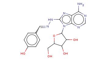 c1cc(ccc1C=NNc2nc3c(ncnc3n2C4C(C(C(O4)CO)O)O)N)O